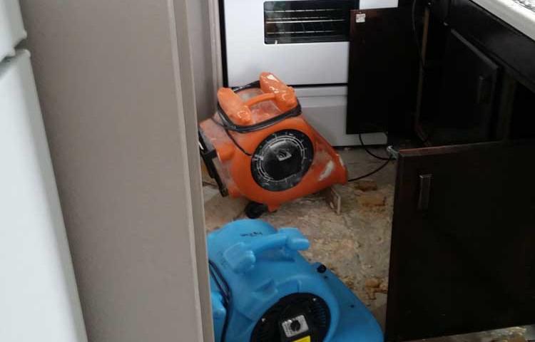 handyman flood repair services utah
